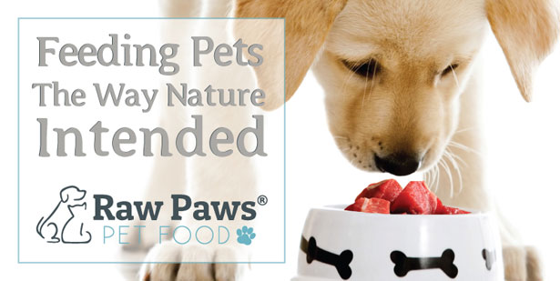 Exclusive Interview with Raw Paws Pet Food®: Providing the Best Raw Life for Pets and Raw Feeders - UPDATED | girlmeetscats.com