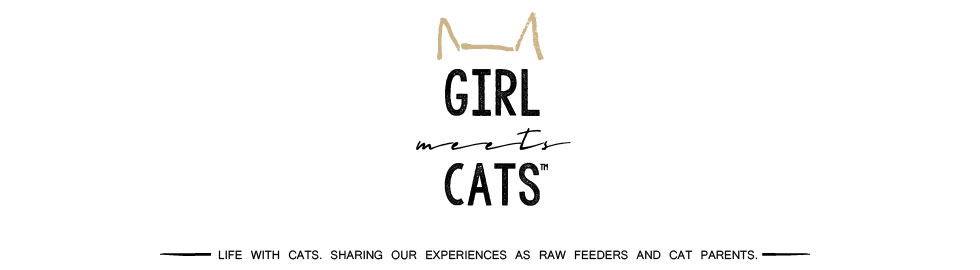 Girl Meets Cats | girlmeetscats.com